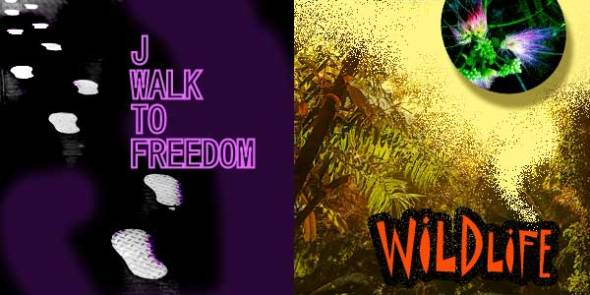 J-Walk to Freedom and Wildlife